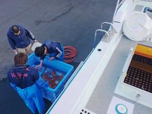 アクアマリンふくしまへの生物輸送