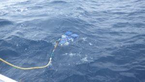 遠隔操作型水中探査機(通称ROV)