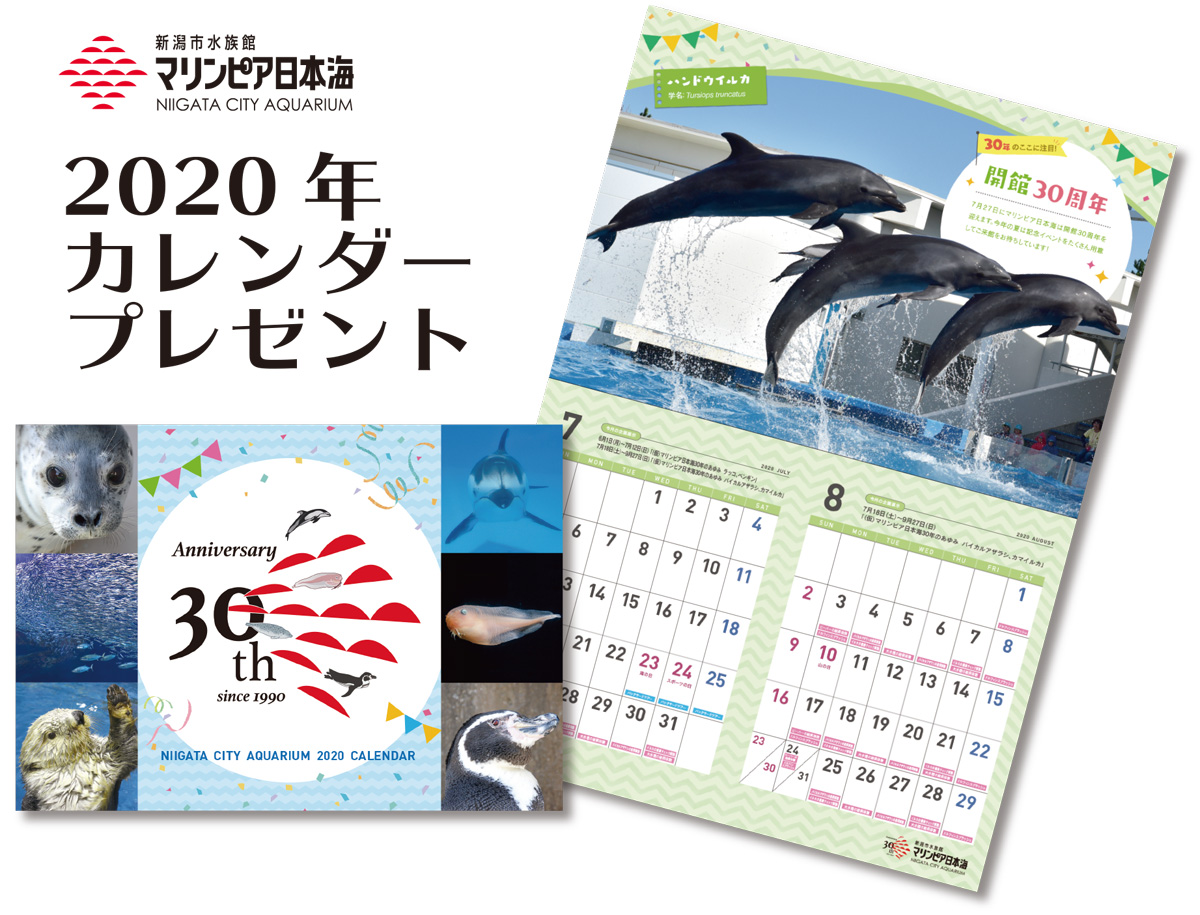 2020年オリジナルカレンダープレゼント(11月17日〜)