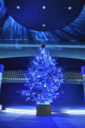 マリンピア日本海クリスマスツリー