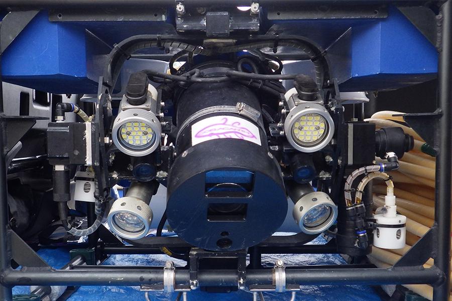 企画展示「水深100mを知るー水中探査機で見た!日本海の海底と生物ー」