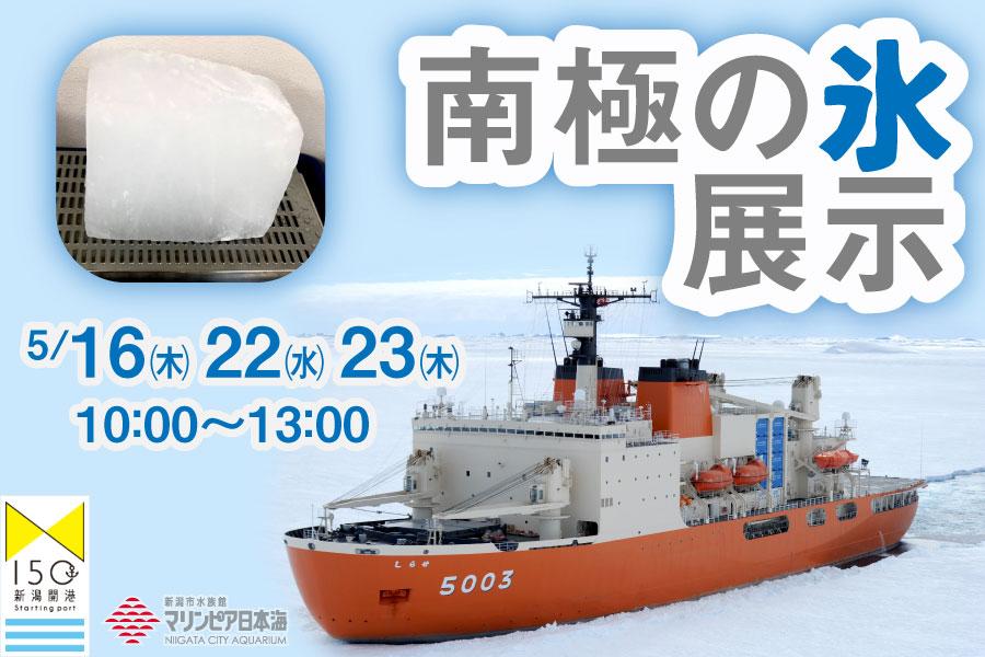南極の氷展示