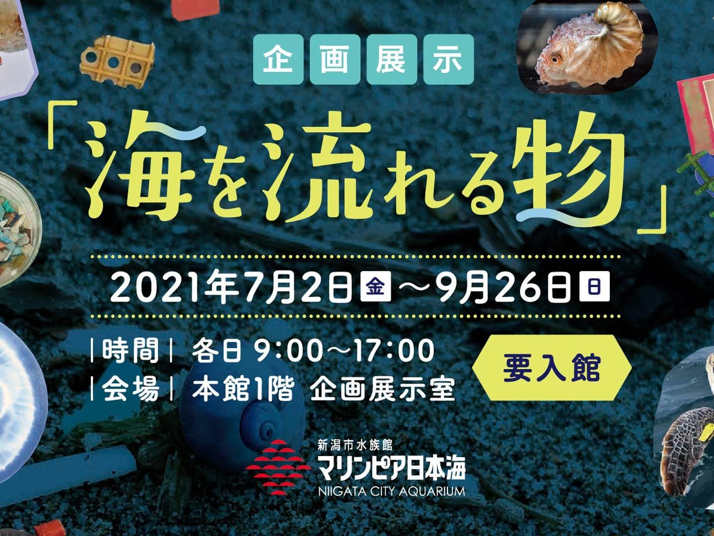 企画展示「海を流れる物」開催中 7月2日-9月26日